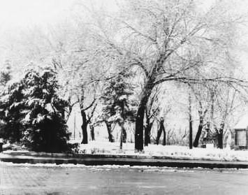 RC Park Snow 1