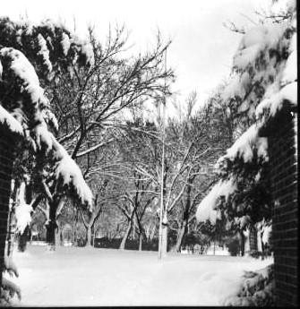 RC Park Snow 2