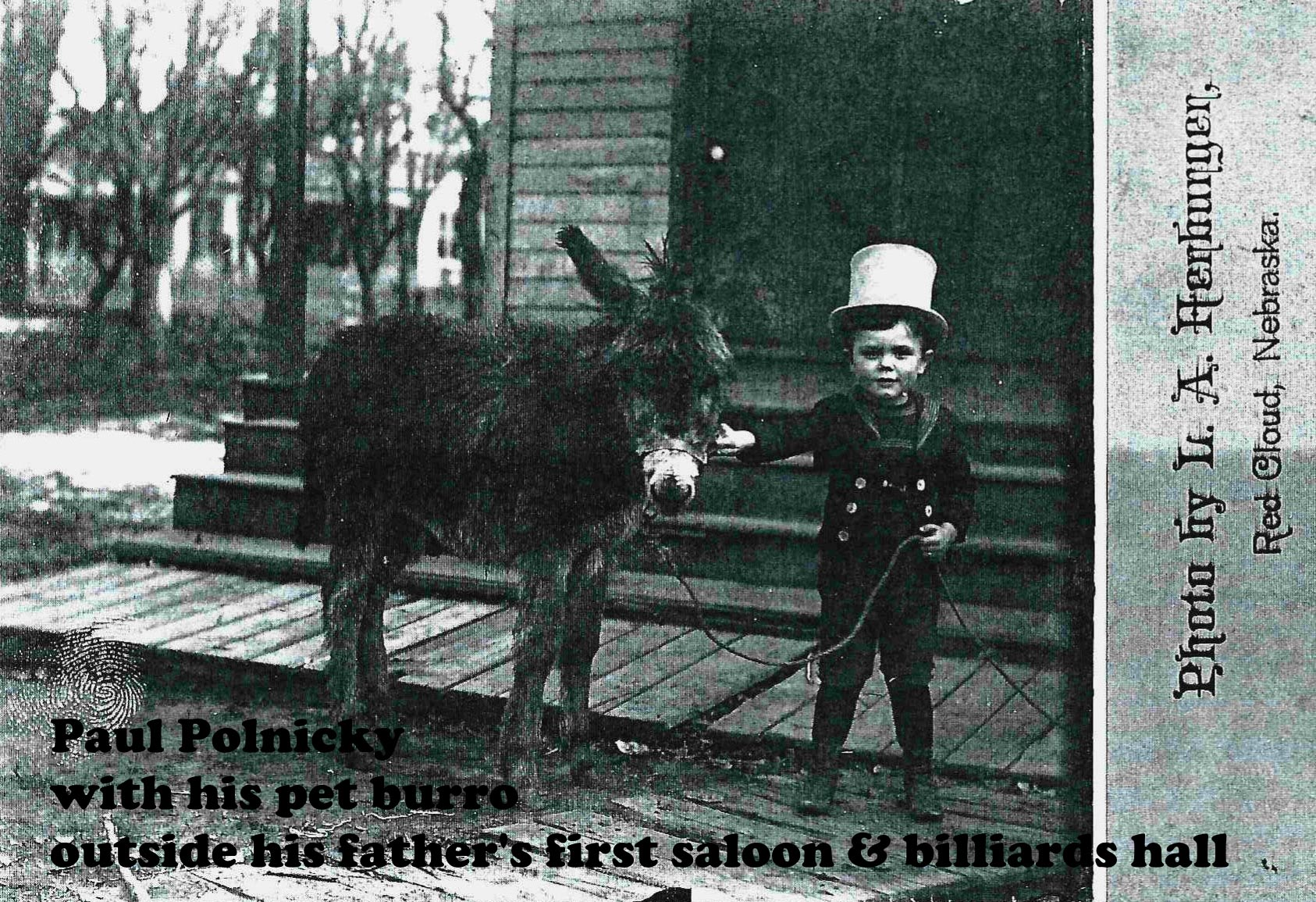 walkingtourLITTLE BOY DONKEY-labeled